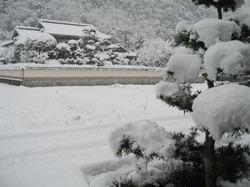 2011.1231_1.JPG